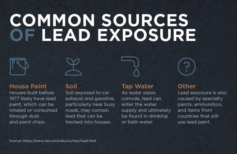 Protecting Your Family From Lead Exposure